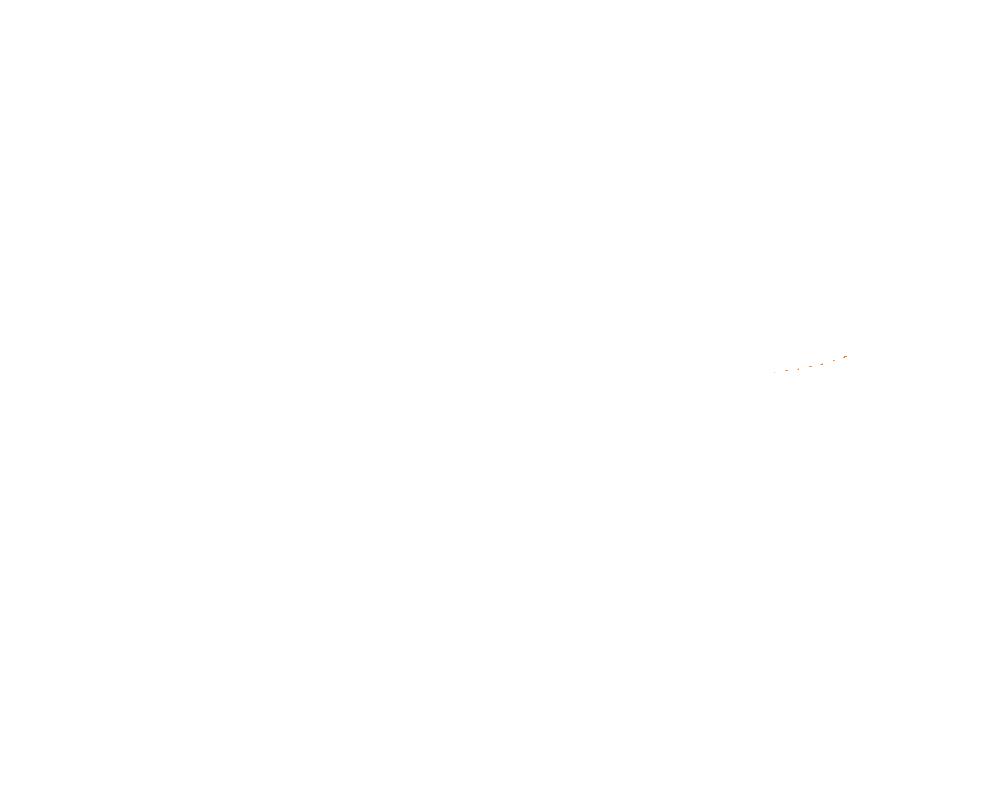 Leech Printing